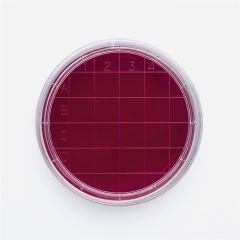 Vase Petri aseptice ISOLAB cu grila, 60*15 mm, 500 buc