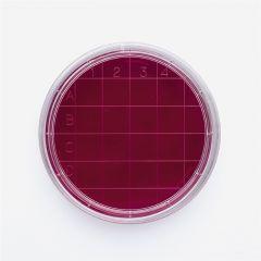 Vase Petri sterile ISOLAB cu grila, 60*15 mm, 500 buc